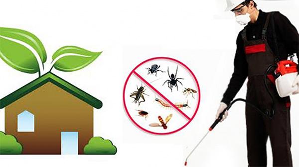 Kapos-Services - Βιοκαθαρισμοί - Απολύμανση - Απεντόμωση